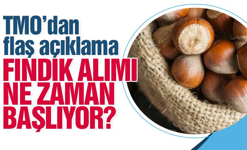 TMO 1 EYLÜL'DE FINDIK ALMAYA BAŞLIYOR
